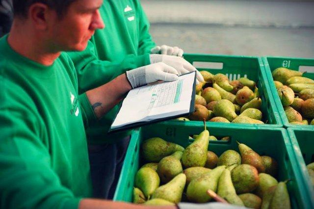 Na owocach można zrobić niezły biznes.