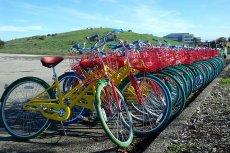 Google traci tygodniowo od 100 do nawet 250 rowerów.