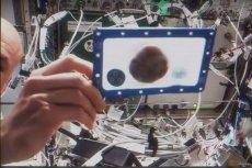 Na ISS upieczono czekoladowe ciasteczka. Wszystko w ramach naukowego eksperymentu.