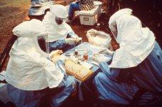 Badania nad wirusem Ebola