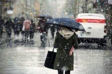 """Wysokie temperatury w styczniu były tylko i wyłącznie """"zasługą"""" człowieka."""