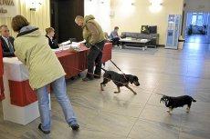 Jesienne wybory stoją pod znakiem zapytania - na drodze stanęły przepisy RODO.