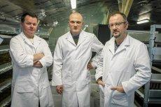 Trzech naukowców nie musiało rzucać korpo, by wpaść na nietypowy biznes. Teraz ich hodowla owadów ma szansę pozyskać kolejnego inwestora.
