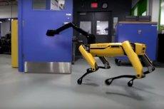 Roboty Boston Dynamics nauczyły się współdziałać przy rozwiązywaniu prostych problemów