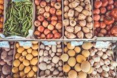 Pomysł utworzenia państwowego holdingu rolno-spożywczego nie spotkał się z entuzjazmem ekspertów handlu.