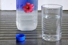 FIJI Water to ulubiona woda Beyonce