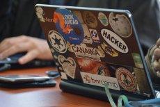 Growth hacking pozwala osiągnąć podobne efekty, co tradycyjny marketing, za ułamek kosztów.