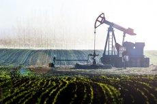 Ceny za baryłkę ropy w Azji poszły w górę o 6,1 dolara, co jest najwyższą podwyżką w ciągu ostatnich dwóch dekad.