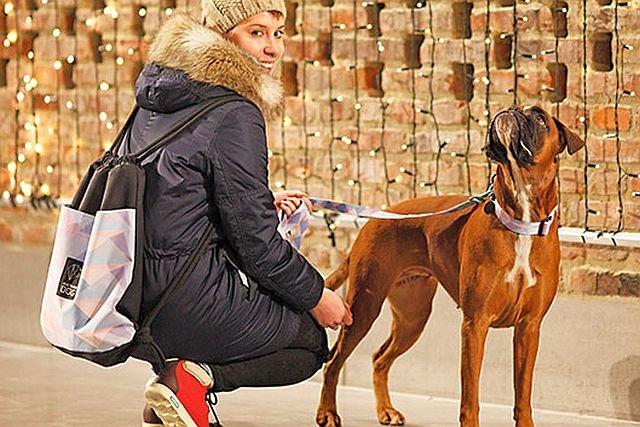 W ubrankach nawet psy uważane za agresywne, wyglądają bardziej przyjaźnie i sympatycznie