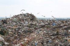 Groźne odpady medyczne i nielegalnie sprowadzone z zagranicy śmieci wykryli na wysypisku śmieci w Rudnej Wielkiej kontrolerzy WIOŚ.