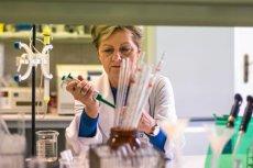 Profesor Grażyna Ginalska z Uniwersytetu Medycznego w Lublinie kierowała pracami nad sztuczną kością od 2004 roku.