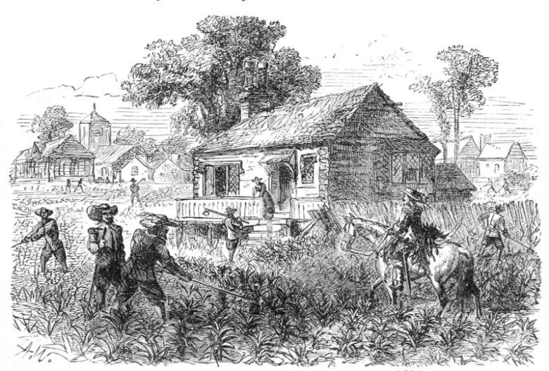 Plantacja tytoniu (ok. 1615 r.) w Jamestown, pierwszej stałej osadzie angielskich kolonistów w Ameryce Północnej