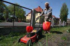 Coraz więcej ofert pracy dla osób po pięćdziesiątce jest dostępne w Portugalii