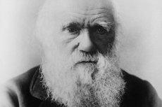 Eksperyment brytyjskich naukowców zadał właśnie ostry cios teorii Charles'a Darwina dotyczącej miejsca najwcześniejszego pochodzenia życia.