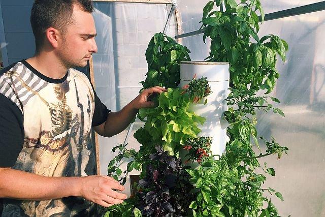 System Aero Tower, stworzony przez Kamila Kucię, pozwala na uprawę roślin bez gleby.