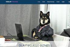 """""""Wierny kompan dla Twojego biznesu"""". Slogan adekwatny do reklamy biura."""