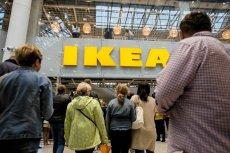 IKEA stawia na kuchnię wegetariańską i wprowadza do swojej oferty wegetariańskie hot-dogi.
