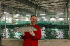 Hodowli łososi z Janowa bliżej do luksusowego spa niż mordowni, z której kojarzone są miejsca hodowli zwierząt