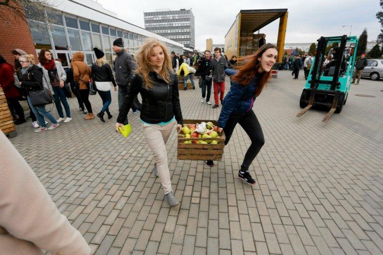 Niewiele pomogła sadownikom mobilizacja polskich konsumentów. Powszechna moda na cydr i jedzenie jabłek nie chwyciła.