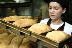 Cena bochenka chleba może wkrótce sięgnąć 8-10 złotych.