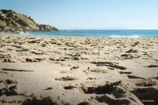 Władze hiszpańskiej wioski zdecydowały się na oprysk plaży chlorem z powodu obawy zakażenia koronawirusem.