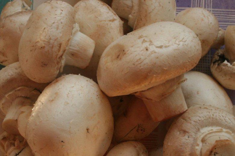 Polska eksportuje najwięcej pieczarek na świecie, a także jest największym w Europie producentem tych grzybów.