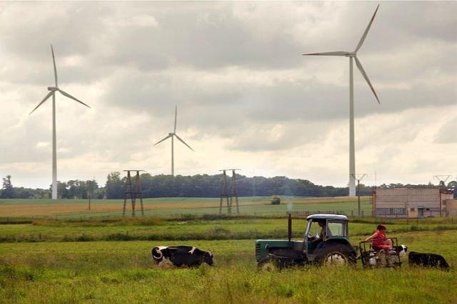 Farmy wiatrowe prowadzi wielu rolników. Kiedyś rząd namawiał ich do inwestowania w działalność pozaroniczą, dziś odwraca się do nich plecami