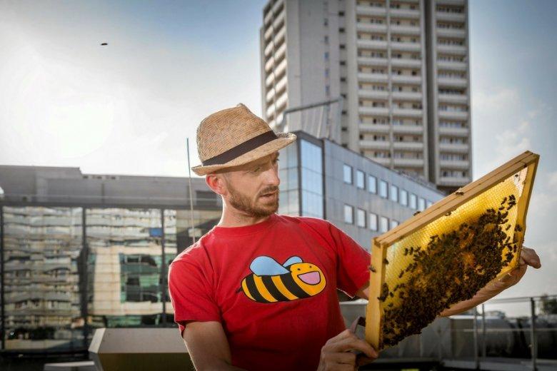 """Powrót zawodu """"pszczelarz"""" to w sporej mierze zasługa mody na pszczelarstwo miejskie."""