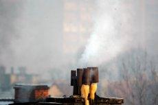 Sąd w Krakowie skazał jednego z mieszkańców miasta na miesiąc ograniczenia wolności za palenie w piecu centralnego ogrzewania drewnem i węglem.