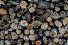 Nowa matryca VAT znosi część podatkowych absurdów. Niektóre produkty żywnościowe będą tańsze, mocno wzrośnie stawka podatkowa na drewno opałowe od 1 lipca