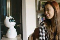 Kiki to robotyczny zwierzak. Można ją głaskać i uczyć sztuczek.