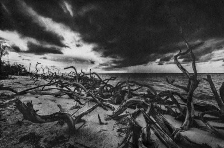 """Foto: Stéphane Noël, """"Un dia de lluvia"""", fotografia w technice gumy dwuchromianowej"""