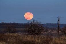 Już w piątek 27 lipca na niebie pojawi się krwawy księżyc. Będzie trwał wyjątkowo długo, bo aż 1 godz i 43 min.