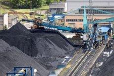 Produkowane przez JSW Innowacje Varmo to sprasowany, wysuszony muł i flot z dodatkiem nieznanego pochodzenia lepiszczy biomasowych