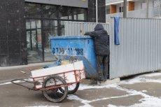Siedzibą sklepu internetowego okazało się... schronisko dla bezdomnych