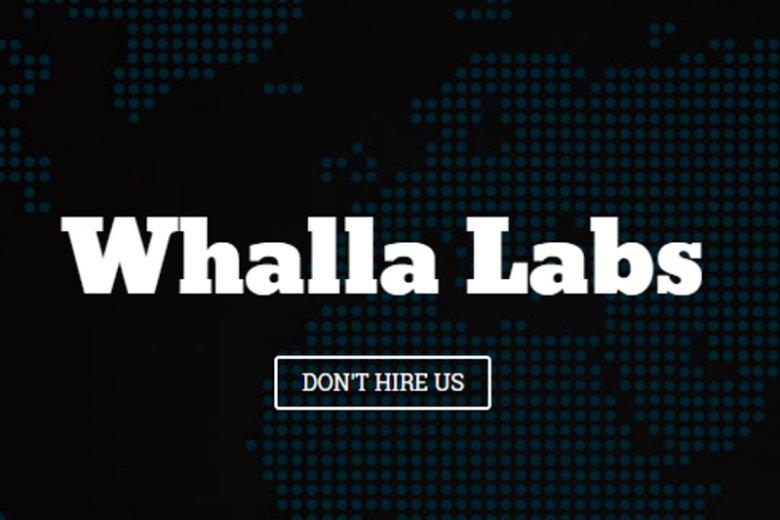 """Polska firma Whalla Labs nie bierze każdego klienta - wybiera tylko tych z ciekawymi projektami. """"Dzięki temu ludziom chce się pracować"""""""