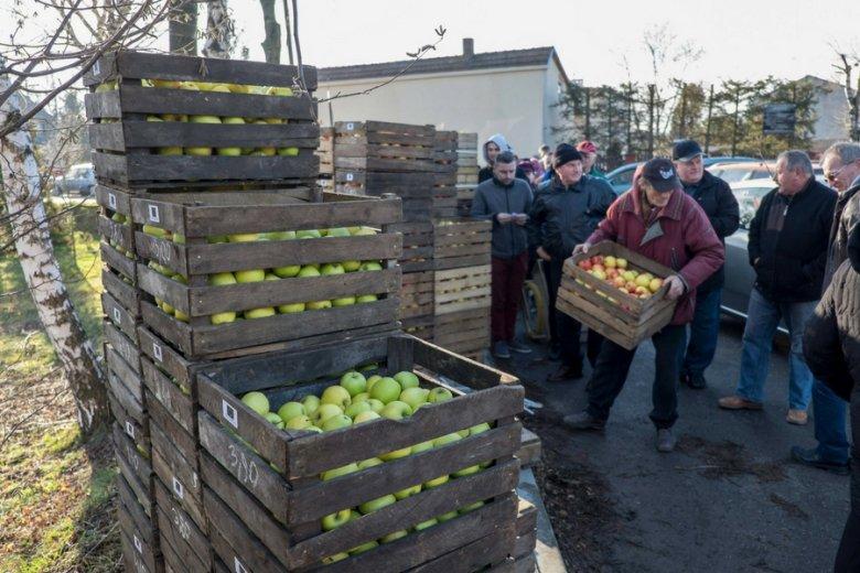 Żeby sprzedać owoce, trzeba je odpolszczyć. Chętnie zajmą się tym pośrednicy m.in. z Białorusi czy Mołdawii.