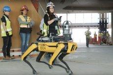 Robo-pies Boston Dynamics trafił na budowę dzięki aplikacji HoloBuilder
