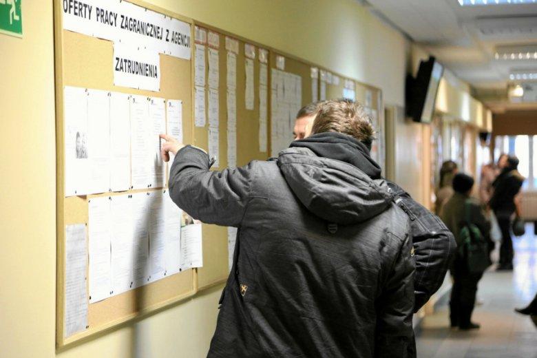 Zaledwie 5 proc. młodych Polaków dopuszcza myśl o pracy za darmo.