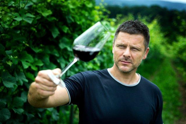 Jak pokazują badania, wino ma szereg właściwości zdrowotnych