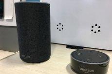 Amazon Echo to jedno z urządzeń, w których badacze znaleźli niebezpieczną lukę.