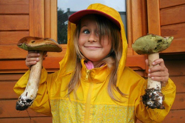 Polscy grzybiarze nie są mile widziani na Słowacji.