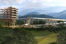 W Krynicy Zdroju powstaje największa w Europie ścieżka turystyczna w koronach drzew