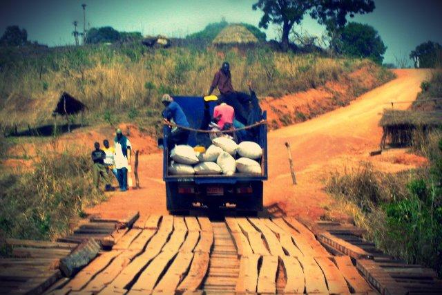 – Afryka nie potrzebuje wyrafinowanych produktów. Wy jesteście tylko kilka miejsc przed nimi. Macie niskie koszty pracy, więc możecie oferować ceny, na które ich stać - doradza prof. Bradford Goldense