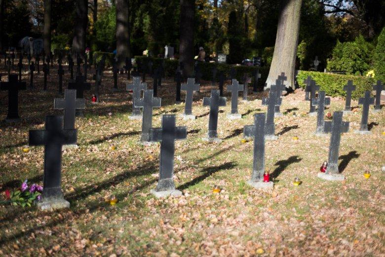 Liczba zgonów w Polsce wzrosła w porównaniu z poprzednim rokiem o 3 proc.