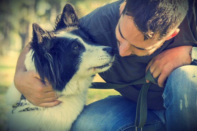 Na wyłapywaniu bezpańskich psów można całkiem nieźle zarobić