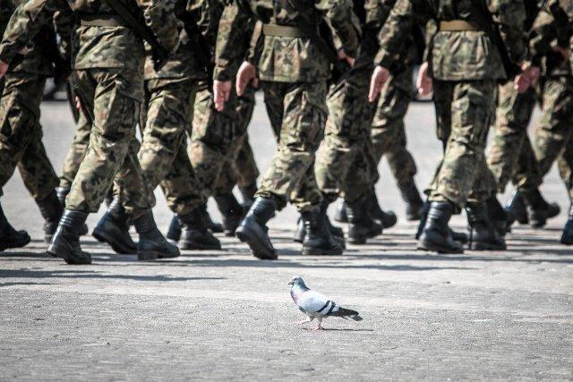 Braki w umundurowaniu polskiej armii są tak duże, że część żołnierzy kupuje sobie służbowe ubrania na Allegro