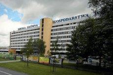 W Szkole Głównej Gospodarstwa Wiejskiego (SGGW) w Warszawie naukowcy wyhodowali jabłoń odporną na choroby