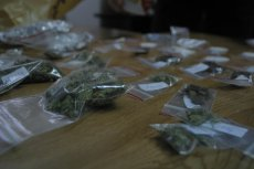 76 kilogramów marihuany ujawnili celnicy. Jej łączna wartość wynosi ok. 2 mln zł