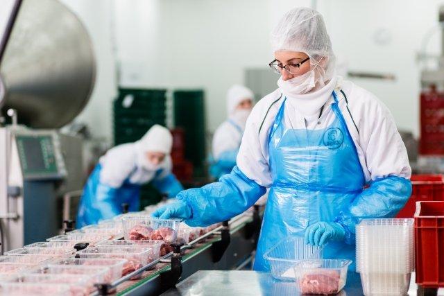Indycza pierś to najlepsze mięso, ma poniżej 2 proc. tłuszczu i od 23 do 27 proc. białka.